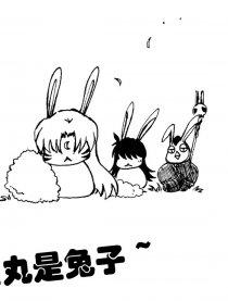 杀生丸是兔子