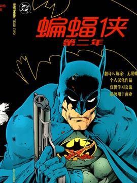 蝙蝠侠 第二年