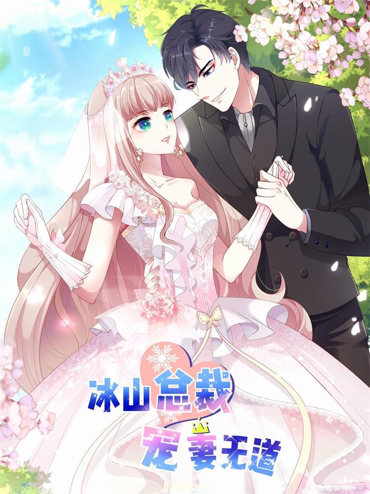 冰山总裁强宠婚