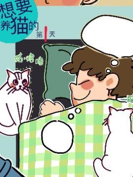 想要养猫的第一天